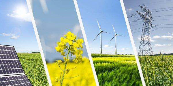 ¿Cuál es la diferencia entre energía renovable, sustentable y alternativa?